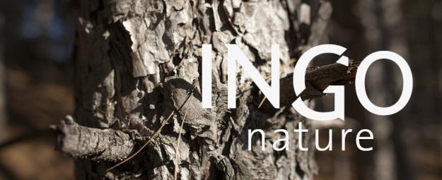 Ingo Nature, tous droits réservés