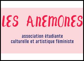 Jeunesse féministe : entretien avec LesAnémones.